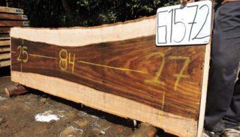 WALNUT PAROTA SLAB G1572
