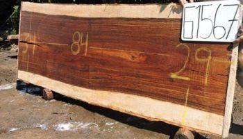 WALNUT PAROTA SLAB G1567