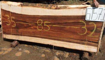 WALNUT PAROTA SLAB G1571