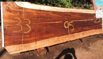 WALNUT PAROTA SLAB G1581